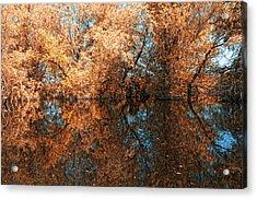 Reflections 3 Acrylic Print by Vessela Banzourkova