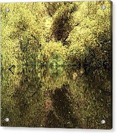 Reflections 4 Acrylic Print by Vessela Banzourkova