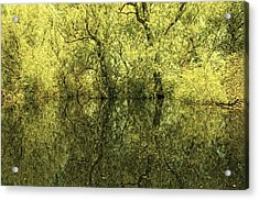 Reflections 5 Acrylic Print by Vessela Banzourkova