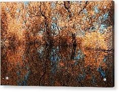 Reflections 6 Acrylic Print by Vessela Banzourkova
