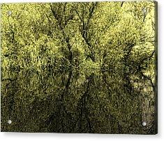 Reflections 8 Acrylic Print by Vessela Banzourkova