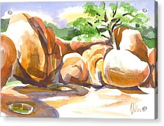Reflections At Elephant Rocks Acrylic Print by Kip DeVore