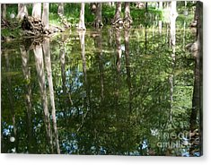 Reflections Acrylic Print by Barbara Shallue