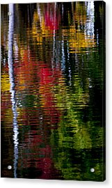 Reflections Acrylic Print by David Cote