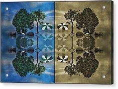 Reflections Acrylic Print by Betsy Knapp