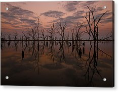 Reflections Acrylic Print