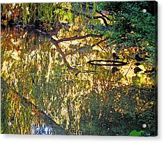 Reflections In Bayou Robert Acrylic Print