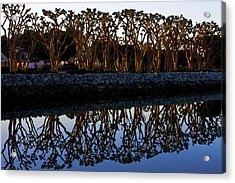 Acrylic Print featuring the photograph Reflections In First Light by Gary Holmes