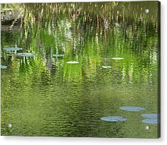 Reflections In Pond At Lunuganga Acrylic Print by Panoramic Images