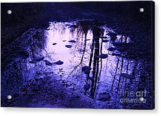 Reflections Acrylic Print by Marianne NANA Betts