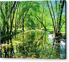Reflections Of A Summer Day Acrylic Print by Rick Todaro