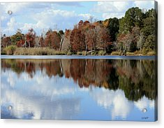 Reflections Of Color Acrylic Print by Debra Forand