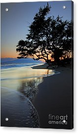 Reflections Of One Acrylic Print by Mike  Dawson