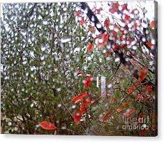 Reflections Of Rain Acrylic Print