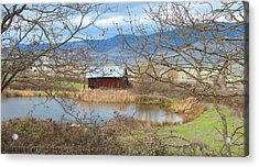 Reflections On A Cloudy Day Acrylic Print by Brooks Garten Hauschild