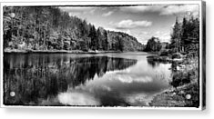 Reflections On Bald Mountain Pond Acrylic Print by David Patterson
