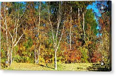 Acrylic Print featuring the photograph Reflections On Fall by Ludwig Keck