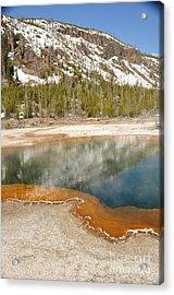 Reflections On Yellowstone Acrylic Print