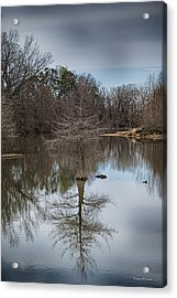 Acrylic Print featuring the photograph Reflections by Yvonne Emerson AKA RavenSoul