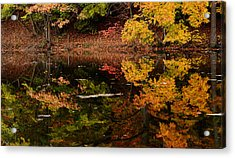 Reflective Colors Acrylic Print by Lourry Legarde