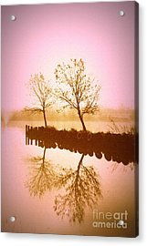 Acrylic Print featuring the photograph Reflective Glow by Julie Lueders