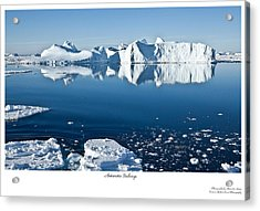 Reflective Icebergs Acrylic Print by David Barringhaus