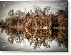 Reflective Morning Acrylic Print by James Barber