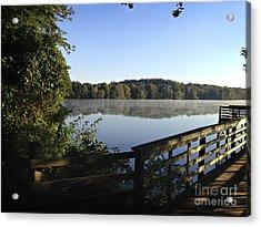 Reflective Morning Acrylic Print by Nancy E Stein