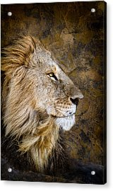 Regal Bearing Acrylic Print
