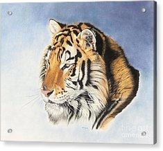 Regal One Acrylic Print