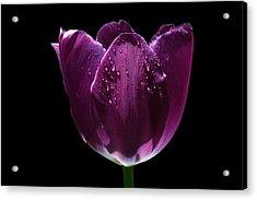 Regal Purple Acrylic Print