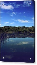Regardless Of The Blues Acrylic Print by Laurie Search