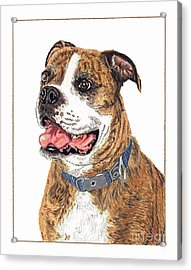 Acrylic Print featuring the painting Reggie by Val Miller