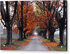 Reid's Orchard Drive Acrylic Print by Wendell Thompson