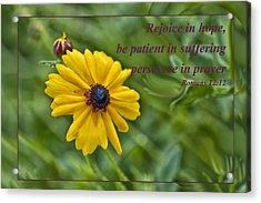 Rejoice In Hope Acrylic Print