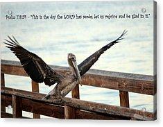 Rejoice Acrylic Print by Jo Sheehan