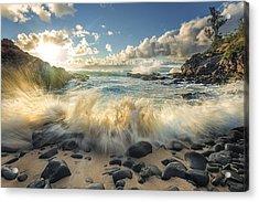 Rejuvenation Acrylic Print by Hawaii  Fine Art Photography