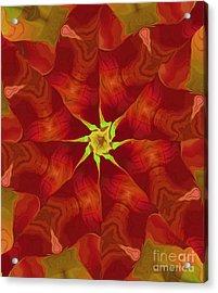 Release Of The Heart Acrylic Print by Deborah Benoit