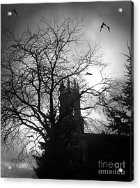 Acrylic Print featuring the photograph Release The Bats by Heather King