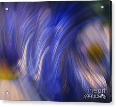 Released Acrylic Print by Leona Arsenault