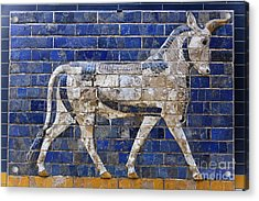 Relief From Ishtar Gate In Babylon Acrylic Print by Robert Preston