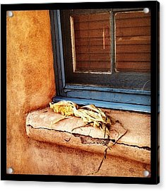 Remains Of The Day Acrylic Print