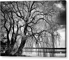 Remains Of Winter Acrylic Print