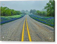 Remembering Spring In Texas Acrylic Print by Jeffrey W Spencer
