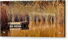 Acrylic Print featuring the photograph Remembering Summer Times by Elaine Malott