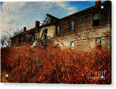 Remembering When Acrylic Print by Lois Bryan