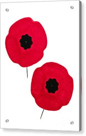 Remembrance Day Poppies Acrylic Print by Elena Elisseeva