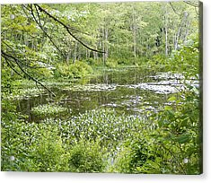 Acrylic Print featuring the photograph Remote by James McAdams