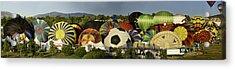 Reno Balloon Race Panorama Acrylic Print