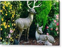 Replica Of Deer Family Acrylic Print
